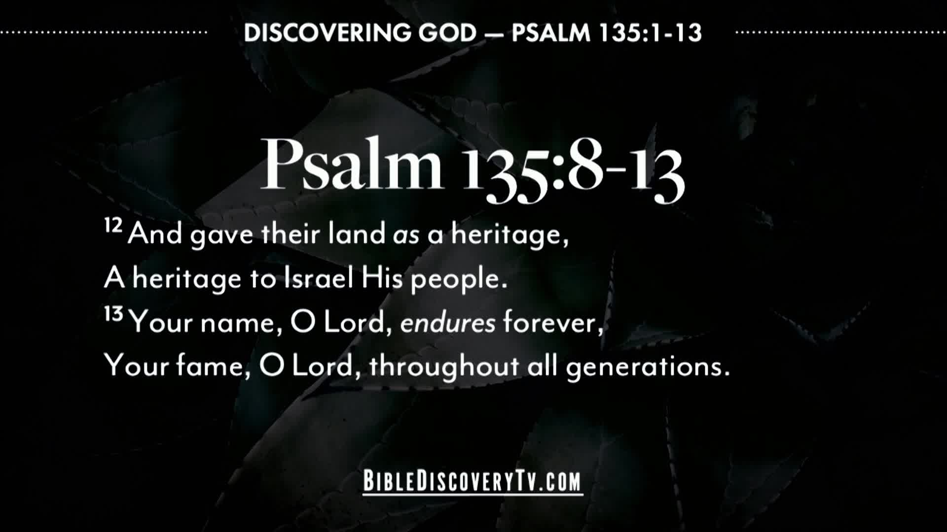 Bible Discovery - Psalm 135 God Is In Control